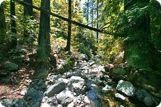 .:. Hiking in Big Sur - Cruickshank Trail to Villa Creek Camp .:.