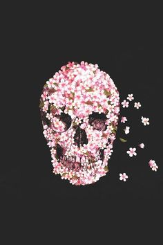 Pink foral skull background / wallpaper for iPhone or iPod