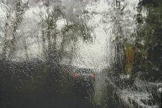 Rain Series / Abbas Kiarostami