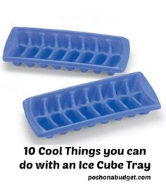 10 Cool Things you can do with an Ice Cube Tray