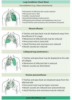 Examination of Respiratory System Cheat Sheet - NCLEX Quiz Pathophysiology Nursing, Pharmacology Nursing, Med Surg Nursing, Cardiac Nursing, Nursing Assessment, Family Nurse Practitioner, Critical Care Nursing, Nursing School Notes, Respiratory Therapy