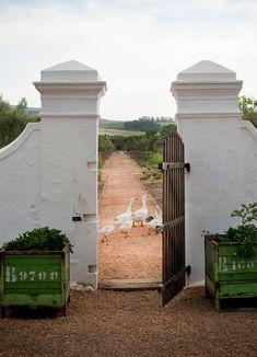 Babylonstoren Farm in Cape Winelands, featured on sharedesign.com.