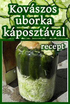 Salad Shop, Hungarian Recipes, Bbq Chicken, Everyday Food, Kefir, Appetizer Recipes, Pickles, Cucumber, Vitamins