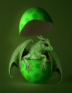 New Born Dragon Green