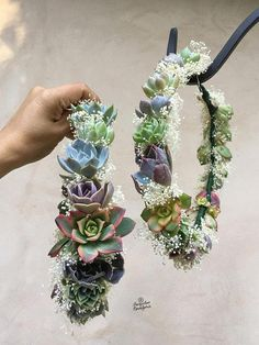 Hand-made with dried baby's breath and small living succulents. We will add purple, green, blue & yellow echeverias and aeoniums to every arrangement. Place crown in a bright…More Wedding Tips, Our Wedding, Wedding Planning, Dream Wedding, Wedding Blue, Quirky Wedding, Fall Wedding, Church Wedding, Trendy Wedding