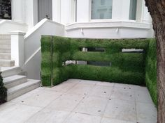 Soleirolia in a parking area - lets light into basement but gives evergreen screen.  Claudia de Yong (thegardenspot) on Twitter