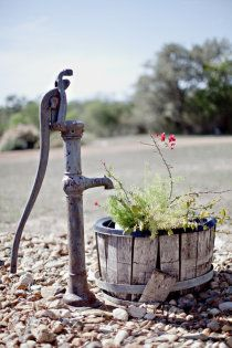 I want a pump like this in my garden
