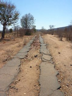 The original strip road from Bulawayo to Vic Falls.I traveled this very road many times. It was super hazardous. when a car approached from the front you had to put one wheel off the tar onto the dirt.