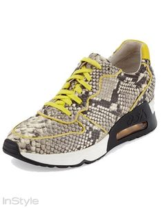 Spor Ayakkabıların Yükselişi