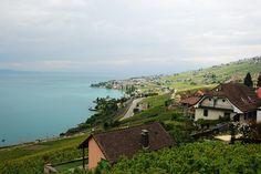 Switzerland - Lausanne - Genebra lake