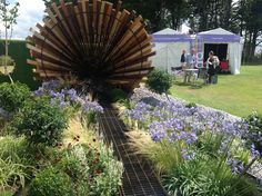 Agapanthus, chocolate cosmos and grasses at Tatton Flower show