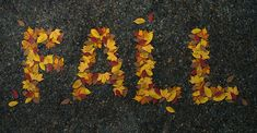 Create a Realistic Autumn Leaves Text Effect in Adobe Photoshop How To Use Photoshop, Photoshop Tutorial, Photoshop Actions, Adobe Photoshop, Lightroom, Creative Photoshop, Photoshop Illustrator, Illustrator Tutorials, Ps Tutorials