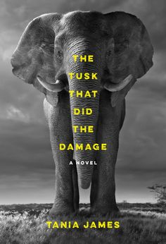 The Tusk That Did the Damage by Tania James is an amazing story of love and betrayal told through the voices of three narrators, one of which is an elephant named Gravedigger.