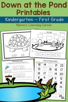 Down at the Pond Worksheet Packet K and First Grade - 20 printable activities! $