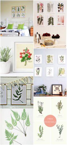 Imprimibles gratuitos. Laminas botánicas/ Free botanical art print
