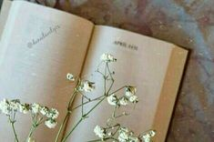 #book #books #bookphoto #flower