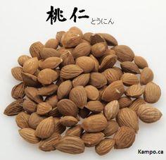 Tao ren - peach kernel: http://kampo.ca/herbs-formulas/herbs/tonin/