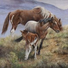 """""""Family Ties"""" Wild Horse Art, Horse Painting, Giclee Canvas Print by Lee Mitchelson Iris print/giclee ~ 36 x 36 Artist Canvas, Canvas Artwork, Canvas Art Prints, Framed Canvas, Framed Prints, 3d Artist, Artist Painting, Animal Drawings, Art Drawings"""
