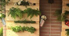 Monta tu propio jardín vertical con palets