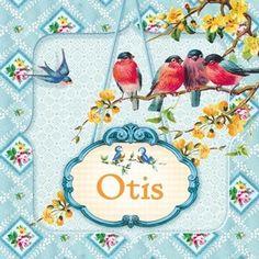 large_Geboortekaartjes-Cartolina-Otis