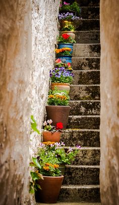 Flowering Staircase - An alley way staircase full of blooms in the village of Portree on the Island of Skye, Scotland.
