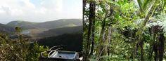 Matuku Reserve