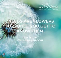 """Weeds are flowers too, once you get to know them."" A.A.Milne / Winnie-the-Pooh"