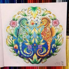 SecretGarden Florestaencantada Enchantedforest Lostocean Oceanoperdido Adult Coloring PagesColoring BooksSeahorsesWeb InstagramStatisticsJohanna