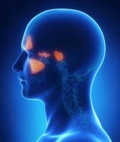 Sinüzit ve migren… Sirkeli suyla en fazla 15 günde bitiyor. Grip zaten gelemiyor. Burnunuza sabah akşam 4te1 oranlı sulandırılmış elma sirkesi çekin. Yani bir kaşığın 4tebirine elma sirkesi kalanını suyla doldurun. Burnunuza biraz keskin gelirse elma sirkesinin oranını düşürün. Zamanla oranı yarı yarıya yapın. Orta kulak iltihabı, sinüzit, migren, guatr, uyku apnesi, horlama, geniz akıntısı, …