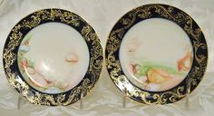Hey, I found this really awesome Etsy listing at https://www.etsy.com/listing/185180396/1900s-limoges-france-haviland-plates