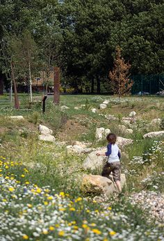 Ladywell_Fields-by-BDP-06 « Landscape Architecture Works | Landezine species and stones wild effect