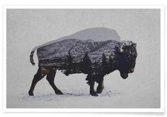 Wandbilder online kaufen   JUNIQE