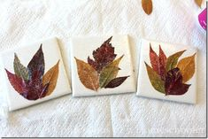 Hi everyone! As you know, we love doing leaf crafts around here, especially in the fall when colors are so vibrant! So today, I have another fun leaf craft for kids that is super easy and cheap!   So let's see what all we need shall we? White bathroom tiles (I found…Read More