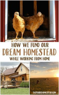 How We Fund Our Dream Homestead While Working From Home