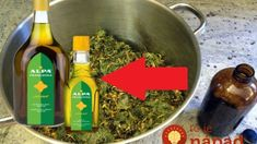 How To Dry Basil, Herbs, Homemade, Ea, Food, Home Made, Essen, Herb, Meals