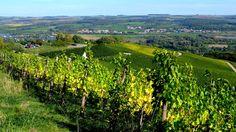 Der Blick nach Nennig  ... und Rheinland-Pfalz über einen Teil von Luxembourg. Auch eine Art Dreiländereck. :-)