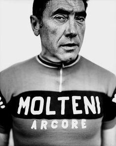 Eddy Merckx by Stephan Vanfleteren    via Iain Claridge
