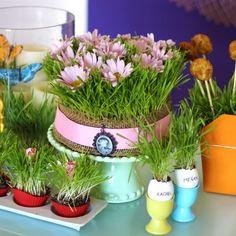 As maravilhas da grama: 5 ideias para decorar sua mesa na primavera