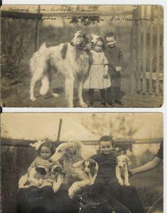 Borzoi dogs of Arnold de Leeuw (1886-1944), Almelo, The Netherlands. Top picture is Slobian-Bielaja with Arnold's children Mimi (1917-1971) and Johan de Leeuw (1915-1944).