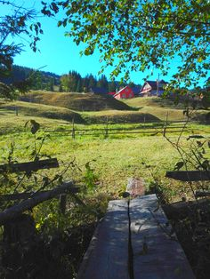 crossing the little stream of the village Outdoor Furniture, Outdoor Decor, Romania, Countryside, Park, Europe, Parks, Backyard Furniture, Lawn Furniture