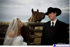 a wedding picture gets some equine attention!