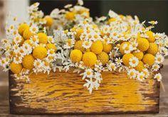 yellow centerpiece decor, yellow flowers, balls, idea, daisies, wooden boxes, centerpieces, flower boxes, lemon