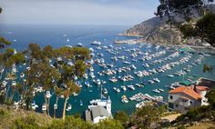 Groupon - Stay at Casa Mariquita Hotel on Catalina Island, CA. Groupon deal price: $118.00