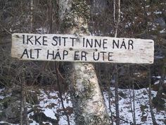 Ti gode gøremål i haven lige nu All Hope Is Gone, This Is Us, Words, Pictures, Outdoor, Norway, Freedom, Hiking, Inspirational
