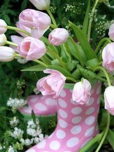 Tulipe rose vert