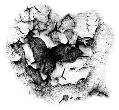 Pack of 15 different looking crack effects. Works with Photoshop, PaintShop Pro and Gimp. Jpg's of the brushes are included in the zip. Layer Style, High Art, Photoshop, Texture, Photography, Stamps, Stamp Sets, Brushes, Creativity