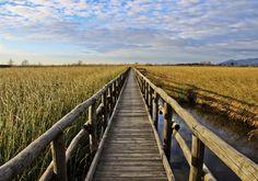 Drenthe, de vijf tips van ... - Nomad & Villager