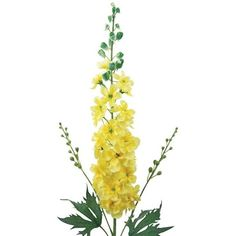 """Laura Cole 33\"""" Delphinium ($55) ❤ liked on Polyvore featuring home, home decor, floral decor, flowers, decor, plants, yellow, flower arrangement, fake flower stems and yellow silk flowers"""