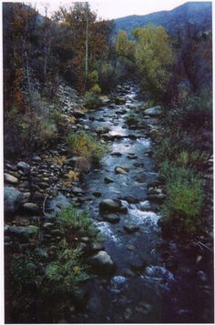 Three Rivers, California. Near Kings Canyon National Park, this is one of the loveliest places on this planet.