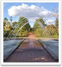 Hours:  Seven days a week 9 a.m. to 5 p.m.  Closed Thanksgiving Day, Christmas Day and New Year's Day.    Admission:  • $12 for adults  • $11 for seniors 60+  • $6 for children 4-12  • Free to Garden Members and children under age 4    Address:  Daniel Stowe Botanical Garden  6500 South New Hope Rd.  Belmont, NC 28012    Directions:  Daniel Stowe Botanical Garden is located just west of Charlotte at the N.C./S.C. state line, outside the town of Belmont. The Garden is easily accessible from…